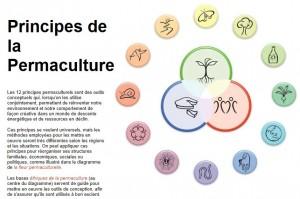 12 principe de la permaculture