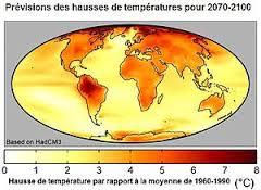 Et si la nature était une solution au changement climatique ?